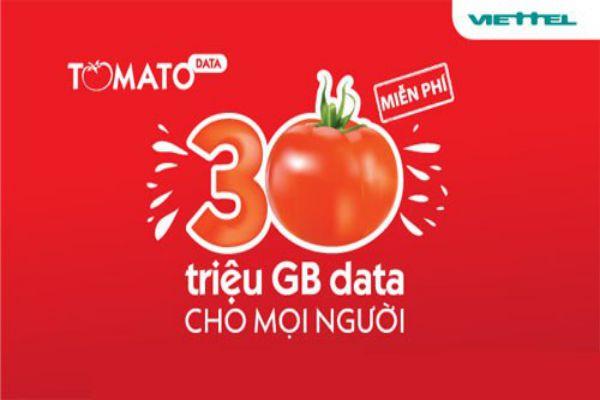 tim-hieu-ve-gia-cuoc-viettel-tomato-2